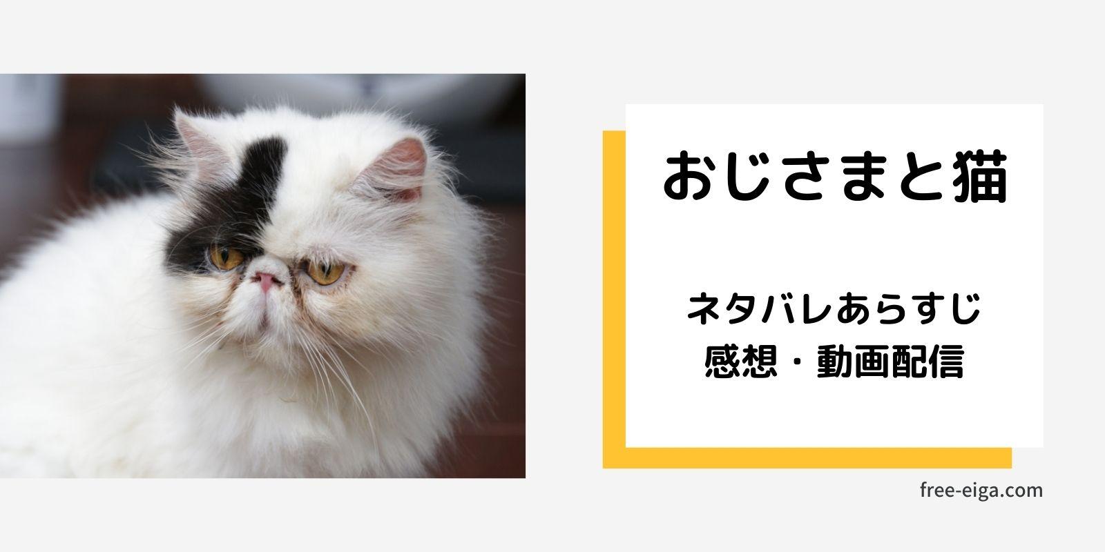 ドラマ「おじさまと猫」ネタバレあらすじ・感想・動画配信情報